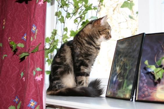 Thindra i favoritfönstret;-)