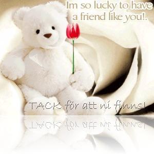 teddybjörn med ros